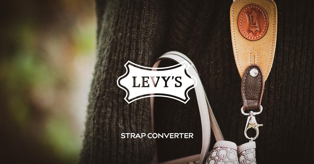 Levy's converter